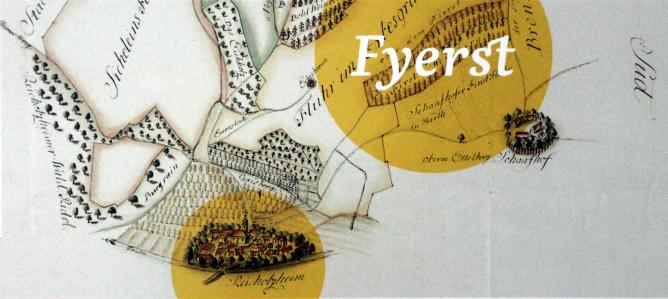 Weinbergslage Fyerst Geschichte